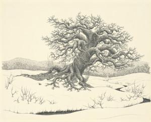 15-earlyspringtree_smweb